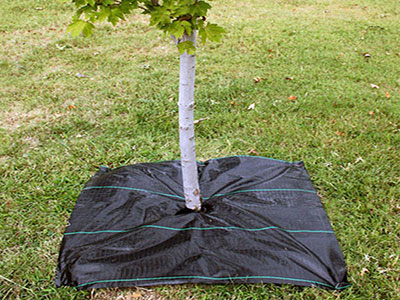 Weed Mat for Tree