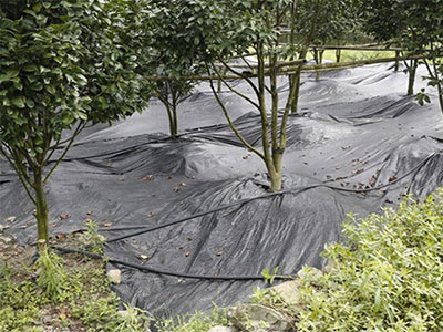 Agriculture Weed Control Mat