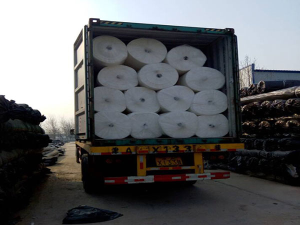 Geotextile Export Container
